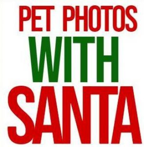 pet-photos-with